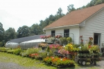 milburt farm and greenhouse