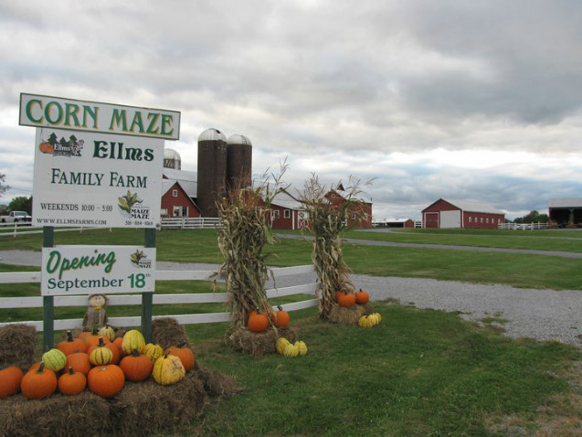 ellms family farm