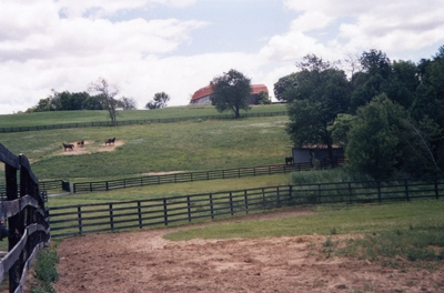 2004-horse-pastures-400px