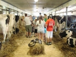 Visitors-to-the-farm-learn-about-how-animals-are-raised-and-where-their-milk-comes-from
