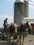 draft-horseride2008