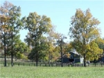 farmand-treees